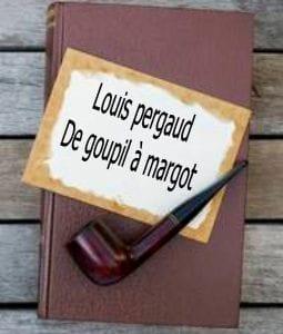ebook de Louis pergaud - De goupil à margot