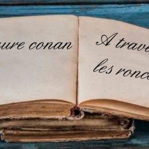 ebook de Laure conan - A travers les ronces